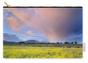 Big Storm And Tornado At Sunset Carry-all Pouch