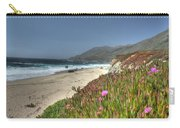 Big Sur Beach Carry-all Pouch by Jane Linders