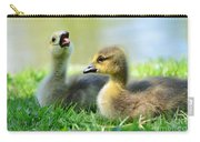 Big Yawn Carry-all Pouch by Kathleen Struckle