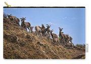 Bighorn Sheep At Blue Mesa Reservoir Carry-all Pouch
