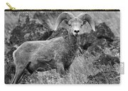 Bighorn Sheep Mountain Carry-all Pouch