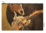 Bighorn Sheep Of The Arkansas River  Carry-all Pouch