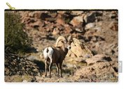 Bighorn Stare Carry-all Pouch