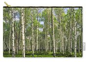 Birch Tree Grove In Summer Carry-all Pouch