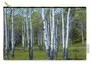 Birch Tree Grove No. 0133 A Fine Art Photograph Carry-all Pouch