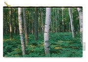 Birch Trees In A Forest Carry-all Pouch