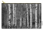 Birch Trees No.0148 Carry-all Pouch