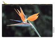 Bird Of Paridise Carry-all Pouch