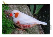 Male Zebra Finch Carry-all Pouch