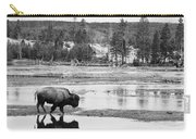 Bison Reflection Carry-all Pouch