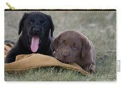 Black And Chocolate Labradors Carry-all Pouch