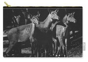 Black And White Antelopes Carry-all Pouch