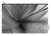 Black And White Lily Z Map L Carry-all Pouch