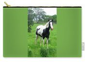 Black And White Paint Horse Carry-all Pouch
