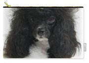 Black And White Poodle Carry-all Pouch