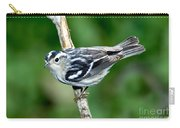 Black-and-white Warbler Mniotilta Varia Carry-all Pouch
