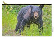 Black Bear Cub Near Road In Grand Teton National Park-wyoming Carry-all Pouch