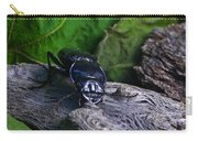 Black Beetle Carry-all Pouch