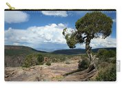 Black Canyon Juniper Carry-all Pouch
