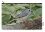 Black-crested Titmouse Carry-all Pouch