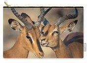 Black-faced Impalas Aepyceros Melampus Carry-all Pouch