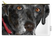 Black Lab Red Collar Carry-all Pouch