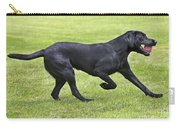 Black Labrador Playing Carry-all Pouch