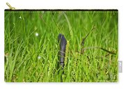 Black Racer Back Carry-all Pouch by Al Powell Photography USA