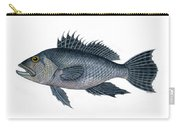 Black Sea Bass 3 Carry-all Pouch
