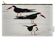 Black Skimmers  Carry-all Pouch