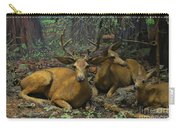 Black Tail Deer Carry-all Pouch