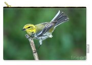 Black-throated Green Warbler, Female Carry-all Pouch