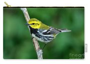 Black-throated Green Warbler, Male Carry-all Pouch
