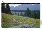 1m3923-blackeyed Susans Carry-all Pouch