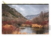 Blacksmith Fork Canyon Carry-all Pouch