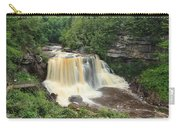Blackwater River Falls West Virginia Carry-all Pouch