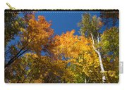 Blazing Autumn Colors - Just Lift Your Head Carry-all Pouch