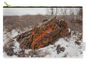 Bleak Winter Arctic Steppe Orange Lichens Rock Carry-all Pouch
