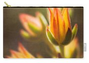 Blooming Succulents V Carry-all Pouch
