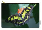 Blooms And Butterfly5c Carry-all Pouch