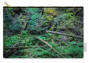 Blow Down Glacier National Park Painted Carry-all Pouch