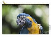 Blue And Gold Macaw V5 Carry-all Pouch