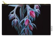 Blue And Pink Succulent Carry-all Pouch