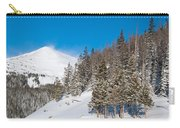 Blue And White Colorado Winter Carry-all Pouch