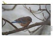 Blue Bird 201301 Carry-all Pouch