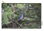 Blue Bird Perched Carry-all Pouch