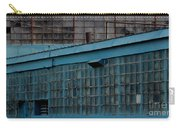 Blue Building Windows Carry-all Pouch