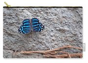 Blue Butterfly Myscelia Ethusa Art Prints Carry-all Pouch