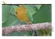 Blue-crowned Motmot 1 Carry-all Pouch