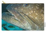Blue-eyed Grouper Fish Carry-all Pouch